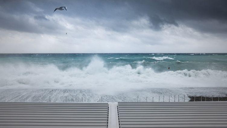 Sur une plage de Nice (Alpes-Maritimes), lors du passage de la tempête Alex, le 2 octobre 2020. (ARIE BOTBOL / HANS LUCAS / AFP)