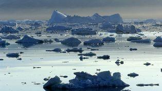 Les icebergs en train de fondre au Groenland, le 24 avril 2017. (PHILIPPE ROY / PHILIPPE ROY)