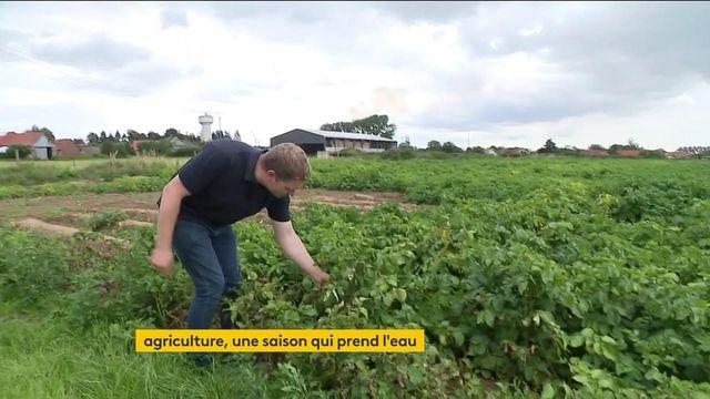 Agriculture : une saison difficile en raison des fortes pluies