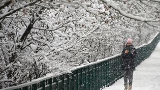 Une femme marche dans la neige à Mulhouse (Haut-Rhin), le 14 janvier 2021. (SEBASTIEN BOZON / AFP)