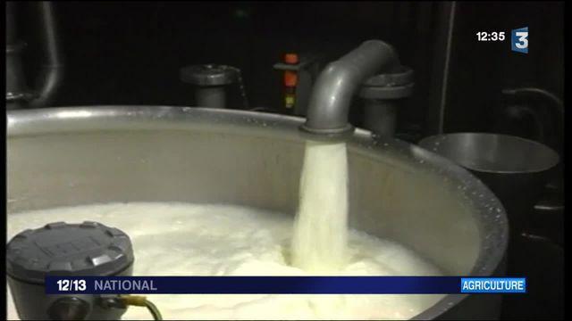 Agriculture : regain de tension autour du prix du lait