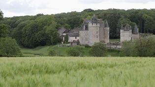 Même s'ils entretiennent toujours l'espoir d'attirer de nouveau du public après le 11 mai, les châteaux français continuent de rester entretenus pour préparer le déconfinement. (France 2)