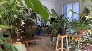 À Dijon, laRessourcerie végétale est en recherche d'un local en centre-ville. L'appartement de Chantale Thierry commence à être très encombré... (ISABELLE MORAND / CHANTALE THIERRY / RADIO FRANCE / FRANCE INFO)