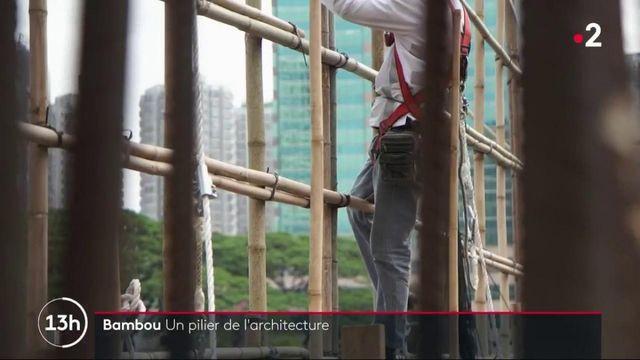 Bambou : un pilier de l'architecture en Asie