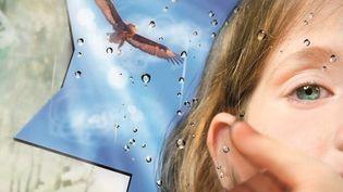 """""""Le miroir brisé"""" (Gallimard Jeunesse) Jonathan Coe, extrait de la couverture  (Chiara Coccorese / Gallimard)"""