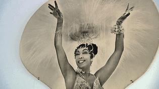 La venteJoséphine Baker présente à la Salle Favart, un lot qui comprend des costumes, des lettres d'amour et des lettres de résistance  (France 3 / Culturebox / capture d'écran)