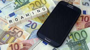 Dans deux mois, fini les factures de téléphone salées de retour de l'étranger...  (SASCHA STEINACH / DPA-ZENTRALBILD)