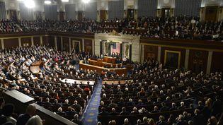 Donald Trump s'exprime devant le Congrès américain, à Washington (Etats-Unis), le 28 février 2017. (MIKE THEILER / AFP)