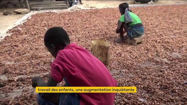 Journée mondiale de lutte contre le travail des enfants : l'Unicef tire la sonnette d'alarme