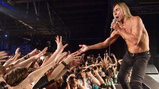 Iggy Pop en concert à Moscou (5/8/2010)  (AFP / Iliya Pitalev / Ria Novosti)