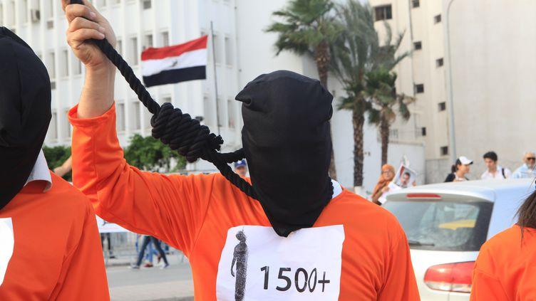 Une personne manifeste à Tunis (Tunisie) pour protester contre des peines de mort prononcées par la justice du pays, le 29 mai 2015. (YASSINE GAIDI / ANADOLU AGENCY / AFP)