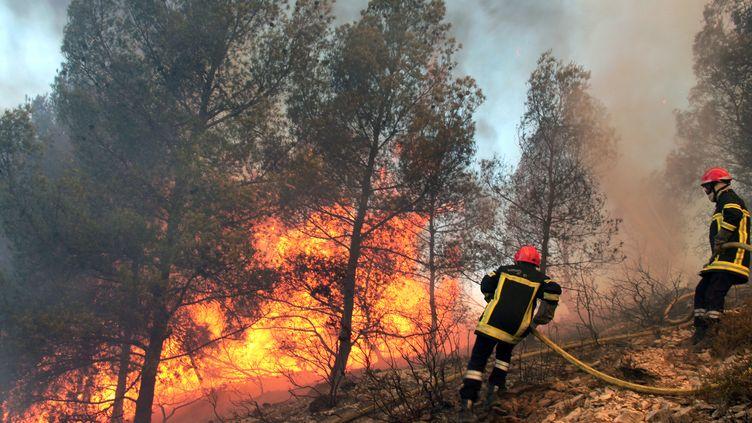 Des pompiers luttent contre les flammes près de la commune d'Orgon (Bouches-du-Rhône), le 26 août 2012. (SEBASTIEN HREBLAY / AFP)