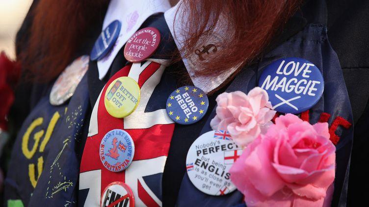 Un manifestant eurosceptique arbore une dizaine de badges anti-européens, le 22 octobre 2011, lors d'un rassemblement à Londres. (OLI SCARFF / GETTY IMAGES EUROPE)