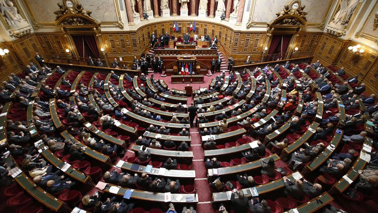 Le Sénat en séance, le 7 avril 2015. (CHARLES PLATIAU / AFP)