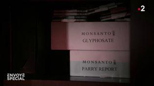 Monsanto, la fabrique du doute (ENVOYÉ SPÉCIAL  / FRANCE 2)