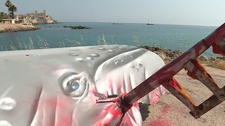 Un voilier transformé en baleine à Antibes, du street art à Antibes  (France Télévisions/culturebox )