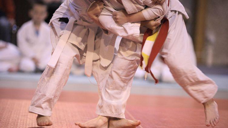 Des enfants font du judo. Illustration. (PHILIPPE TURPIN / MAXPPP)