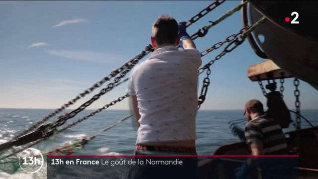 Normandie : auprès des pêcheurs et producteurs, les artisans du goût normand