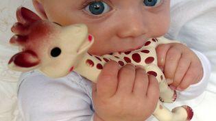 Sophie la Girafe, un petit animal en caoutchouc naturel, plébiscitée par les parents et adulée par tous les bébés, est reçue en cadeau de naissance depuis 60 ans. (AURELIA BAILLY / AFP)