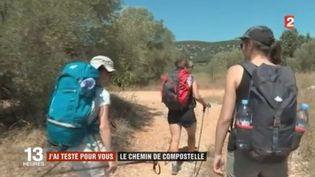 Chaque année, pèlerins et randonneurs sont de plus en plus nombreux à arpenter les chemins de Saint-Jacques-de-Compostelle (Espagne). (FRANCE 2)