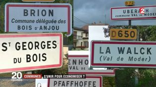 Fusion des communes : s'unir pour économiser ? (France 2)