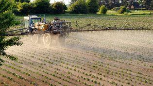 Un agriculteur arrose de pesticides un champ de pommes de terre à Godewaersvelde, dans le Nord, le 30 mai 2012. (PHILIPPE HUGUEN / AFP)