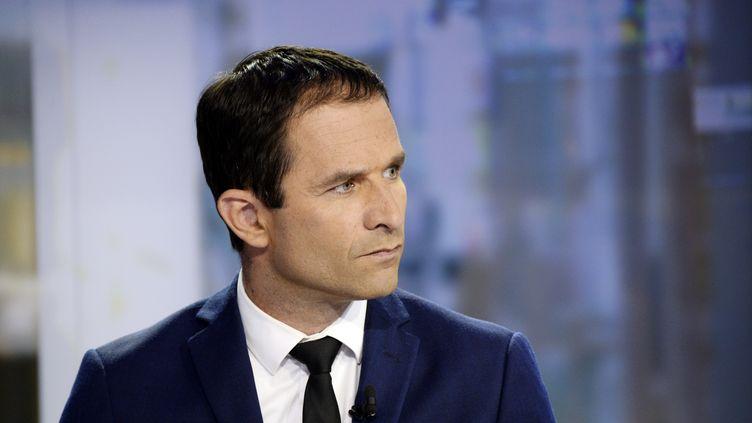 Le ministre de l'Education nationale, Benoît Hamon, explique son départ du gouvernement, le 25 août 2014, sur le plateau du JT de France 2. (BERTRAND GUAY / AFP)