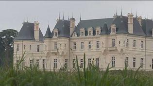 Après avoir rénové leur domaine, les propriétaires d'un château dans le Maine-et-Loire ont décidé de vendre à perte à cause d'un projet éolien dans la commune.  (CAPTURE ECRAN FRANCE 2)