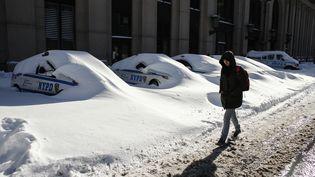 Une Américaine passe devant des voitures de la police ensevelies sous la neige, à New York (Etats-Unis), le 24 janvier 2016. (KENA BETANCUR / AFP)