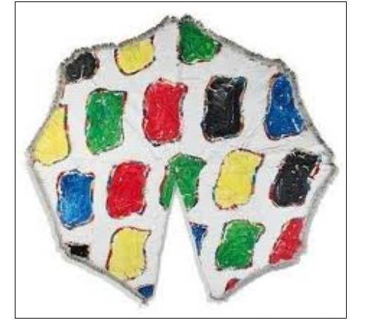 """Les fameux """"haricots"""" de Viallat, pochoirs sur tissu,à noter la partie manquante en bas....  (DR)"""