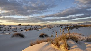 Le désert deWhite Sands National Monument, aux Etats-Unis, dans l'Etat du Nouveau-Mexique, photographié en 2012. (JAMES HAGER / ROBERT HARDING / AFP)