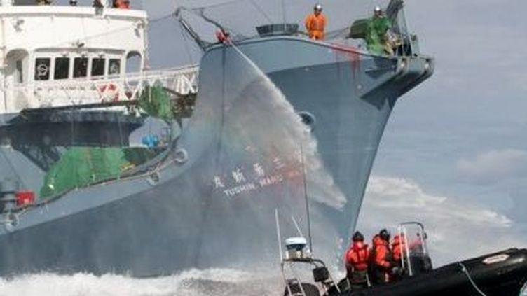 Un bateau pneumatique de l'organisation Sea Shepherd s'oppose à la chasse d'un baleinier japonais durant la campagne 2012-2013. (Sea Sheperd)