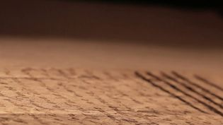 C'est une correspondance qui fait couler beaucoup d'encre, et pourtant elle ne date pas d'aujourd'hui. Les lettres échangées entre Marie-Antoinette et le Comte suédois Axel Von Fersen. Tous deux s'adressaient des mots doux en toute discrétion, mais la science les a rattrapés. (CAPTURE ECRAN FRANCE 2)