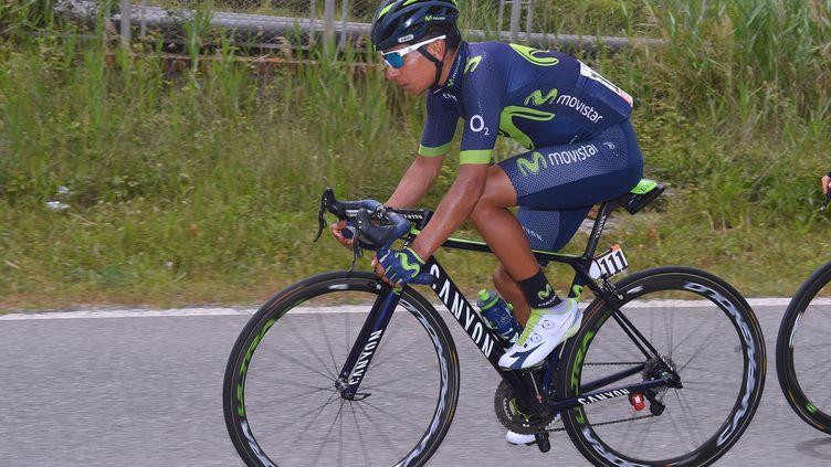 Le Colombien Nairo Quintana (DE WAELE TIM / TDWSPORT SARL)
