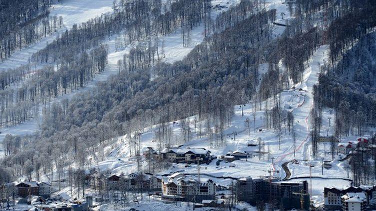 """Dédié au ski acrobatique et au snowboard, le parc extrême """"Rosa Khutor"""" a été implanté au beau milieu d'une forêt. (KIRILL KUDRYAVTSEV / AFP)"""