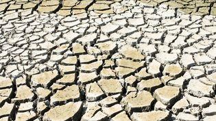 Un plan d'eau à sec, dans la Loire,à cause d'un manque de pluie, le 15 septembre 2020. (VERONIQUE POPINET / HANS LUCAS / AFP)