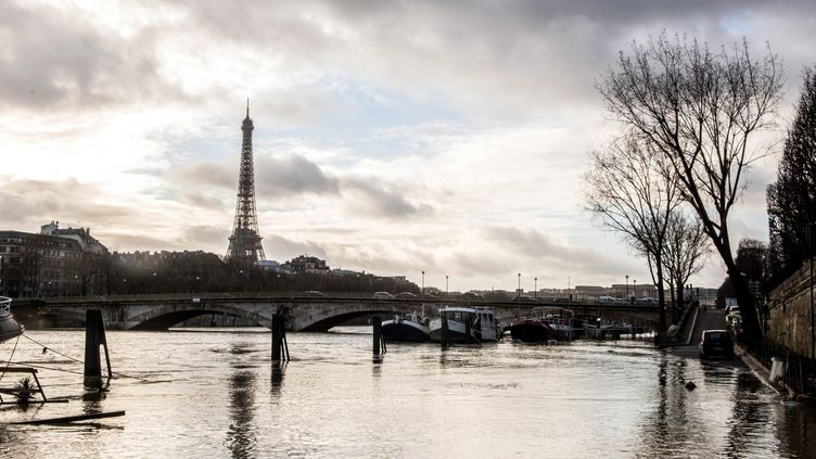 La Seine en crue à Paris, le lundi 22 janvier 2018. (MAXPPP)