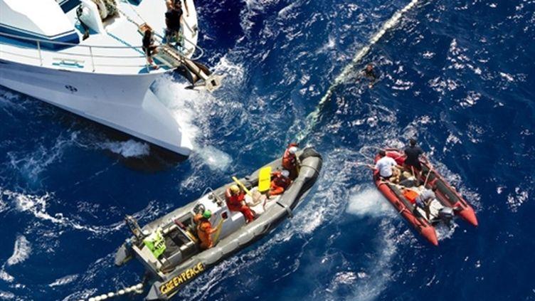 Photo, prise par un phographe de Greenpeace, montrant des heurts entre les militants de l'ONG et des pêcheurs français (AFP - GREENPEACE - PAUL HILTON)