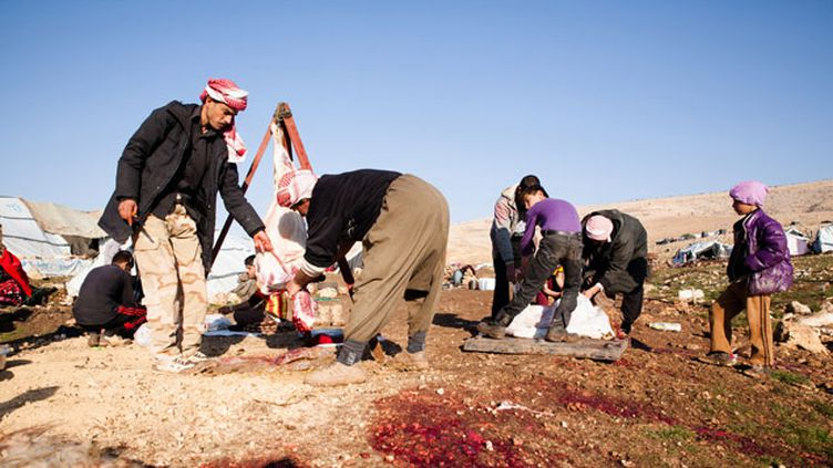 (Un camp de réfugiés yézidis, en 2014, au sommet de la montagne du Mont Sinjar en Irak © MaxPPP)
