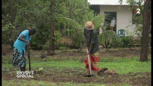 Avant d'être interdit au Sri Lanka, le glyphosate a ruiné la vie de cette famille (ENVOYÉ SPÉCIAL  / FRANCE 2)