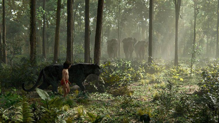 "Neel Sethi (Mowgli) et la panthère Bagherra dans ""Le Livre de la jungle"" de Jon Favreau  (The Walt Disney Company France )"