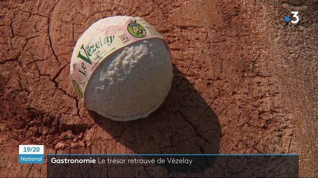 Yonne : la renaissance du Vézelay, un fromage de chèvre oublié