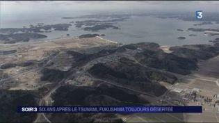 La région de Fukushima a été désertée après le tsunami. (FRANCE 3)