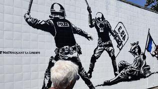 Une passante observe l'œuvre de street art de l'artiste Goin, le 27 juin 2016 à Grenoble  (Philippes Desmazes / AFP)