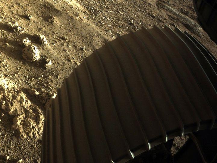 Une des six roues du robot Perseverance après son atterrissage sur Mars, le 18 février 2021. (HANDOUT / NASA/JPL-CALTECH)