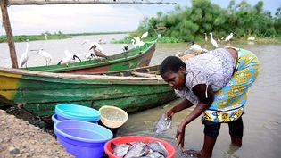 Lilian Atieno, marchande de poisson, prépare sa marchandise sur les rives du lac Victoria à Kisumu (Kenya), le 18 mars 2020. (JAMES KEYI / REUTERS)