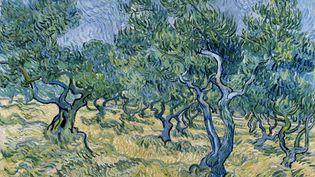 Vincent Van GoghOliveraieJuin 1889,huile sur toile,72,4 x 91,9 cm.Signée en bas à gauche : VincentKröller-Müller Museum, Otterlo (COLLECTION KRÖLLER-MÜLLER MUSEUM, OTTERLO)