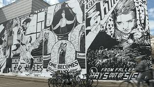 La ville de Strasbourg a invité le collectif Faile à fêter les 20 ans du musée d'art contemporain en street art  (France 3 / Culturebox )