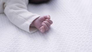 Après l'Ain, le Morbihanet la Loire-Atlantique, trois nouveaux cas de bébés nés sans bras ont été signalés dans lesBouches-du-Rhône. (ANNE-SOPHIE BOST / MAXPPP)