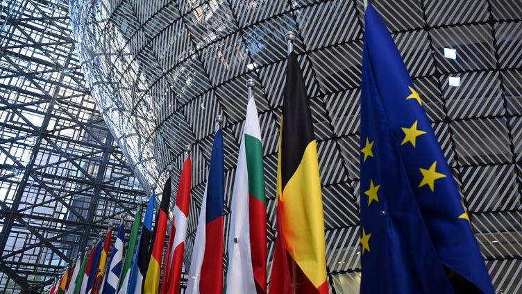 Les drapeaux européens et nationaux à Bruxelles, le 13 mai 2019. (EMMANUEL DUNAND / AFP)